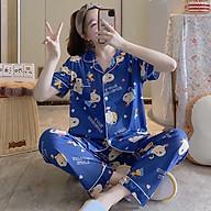 Bộ pyjama vải hoạ tiết đa đạng, màu sắc nhã nhặn cho các bạn nữ mẫu mới 2021 thumbnail
