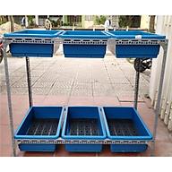 Giàn trồng rau thông minh 2 tầng 6 chậu màu xanh thumbnail