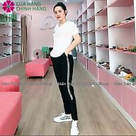 Quần jogger nữ Hiền Trần BOUTIQUE dáng dài cạp chun dây buộc, kiểu sọc kim tuyến 2 bên thumbnail