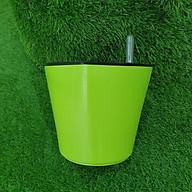 Chậu trồng cây tự dưỡng thông minh thumbnail