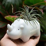 Chậu trồng cây - D12 x R7 x C8 cm - Gốm sứ - Hình thú dễ thương thumbnail