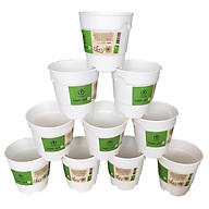 Chậu nhựa trồng cây để bàn cao cấp Minigarden Basic Pot S (Combo 10 chậu) nhập khẩu Châu Âu, Nhựa PP Chống UV, có khả năng tự hút nước và thoát nước giúp cây sống tốt mà không cần chăm sót thumbnail