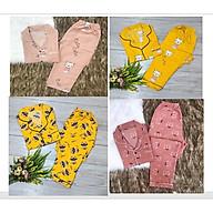 Đồ bộ Pizama nhiều màu hàng đẹp - MSP2021011HUYEN - Giao màu ngẫu nhiên - Freesize thumbnail