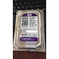 Ổ cứng HDD 500GB WD chuyên Camera - Ổ cứng Western 500GB - WD500 ( Hàng Chính Hãng ) thumbnail
