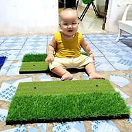 Thảm tập Swing Golf Mini - ECO [33Cm x 63Cm] Tặng kèm 2 Tee cao su 54mm & 70mm, Có cỏ tập chip,chất lượng tốt. thumbnail