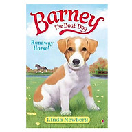Usborne Young Fiction Barney the Boat Dog Runaway Horse thumbnail