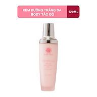 TONE-UP BODY LOTION Kem Dưỡng Trắng Da Toàn Thân Chiết Xuất Tảo Đỏ Rosie Skin 120ml thumbnail