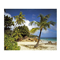 Tranh Dán Tường CASAMA Bãi Biển - Đảo Praslin NW8-885 thumbnail
