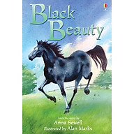 Usborne Young Reading Series Two Black Beauty thumbnail
