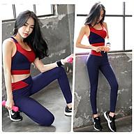 Bộ Quần Áo Tập Yoga Gym Thể Thao Nữ Đẹp Cao Cấp, Form Chuẩn Tôn Dáng, Áo Croptop Có Mút - HK94 thumbnail