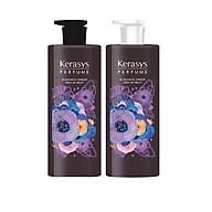 Bộ dầu gội, xả nước hoa cao cấp bổ sung dưỡng chất giúp hạn chế hư tổn và gãy rụng cho tóc KERASYS ELEGANCE AMBER 600ml - Hàn Quốc Chính Hãng thumbnail