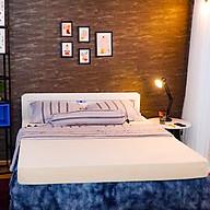 Nệm Cao Su Thuần Việt Premium (Đồ dùng phòng ngủ) thumbnail