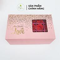 Set Quà Tặng Mini Garden Pink Rose Giftset - With Love Giftset Cực Xinh PV987 thumbnail