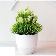 Chậu cây giả, chậu cỏ có hoa màu trắng thumbnail
