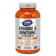Arginine & Ornithine 500 mg 250 mg Hỗ trợ Chuyển hóa protein Xúc tác Nitric Oxide Thải Độc Urê Axit Amin phổ biến với các vận động viên (250 Viên) thumbnail