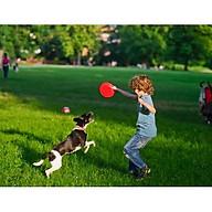 Đĩa Ném Frisbee Vui Chơi cùng Thú Cưng vừa Tập Luyện Thể Thao thumbnail