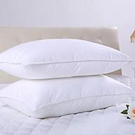 Đôi Ruột Gối Cao Cấp Làm Từ Bông Trắng Loại 1 - 50 x 70cm (1.5kg 2 Chiếc) thumbnail