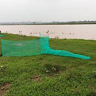 Đăng chặn sông, cống - bắt tôm tép tất cả các loại cá - Dớn bắt cá, cua, lươn thumbnail