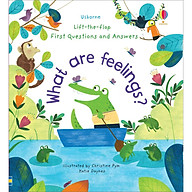 Sách Usborne Lift-the-Flap First Questions and Answers What are feelings thumbnail