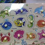 Bảng núm gỗ sinh vật biển thumbnail