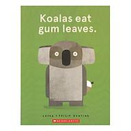 Koalas Eat Gum Leaves thumbnail
