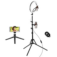10 Inch 26cm Ring Light Kit with 2900-6600K Bi-color Dimmable Ring Video Light 3 Lighting Modes 10-Level Brightness with thumbnail