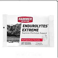 Bộ 4 gói Viên uống điện giải- Hammer Nutrition Endurolytes Extreme thumbnail