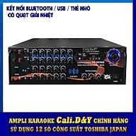 Amply Bluetooth Ampli Karaoke Gia đình 12 sò lớn Cali.D&Y PA-9090D - Hàng chính hãng thumbnail