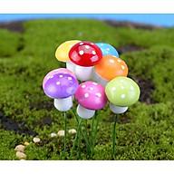 Nấm Trang Trí Tiểu Cảnh, Chậu Cây Cảnh ( màu ngẫu nhiên) thumbnail
