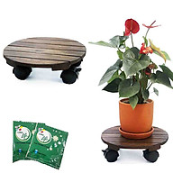 Bộ 2 Đế lót chậu cây-Đĩa lót chậu hoa-Greenhome_Có bánh xe (Tròn-Đen)-chịu lực 80Kg-Kích thước R30xC8cm-TẶNG HAI GÓI DƯỠNG HOA TƯƠI LÂU thumbnail