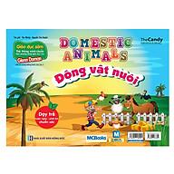 Flashcard Dạy Trẻ Theo Phương Pháp Glenn Doman - Động Vật Nuôi (Giao Ngẫu Nhiên) thumbnail