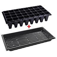 3 Bộ Vỉ nhựa ươm hạt giống kèm Khay chứa nước ươm cây 55 30 5.5 cm, Kit khay nhựa PVC thumbnail