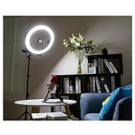Đèn led HD Ring RL18 chiếu sáng Studio, makeup, quay phim , chụp ảnh,livetream thumbnail