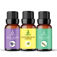 Combo Tinh dầu thơm phòng Tinh dầu Oải Hương - Tinh dầu Ngọc Lan Tây - Tinh dầu Sả Java 10ml chai JULYHOUSE - Tinh dầu thiên nhiên thumbnail