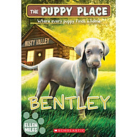 Bentley (The Puppy Place 53) thumbnail