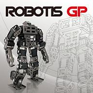 ROBOTIS GP- Hàng nhập khẩu thumbnail