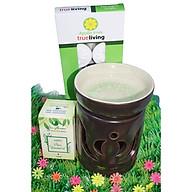 Combo đèn xông tinh dầu nến số 2 + tinh dầu sả chanh 10ml Bio Aroma tặng kèm 10 viên nến tealight (đèn giao màu ngẫu nhiên) thumbnail