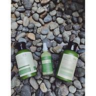 Bộ chăm sóc tóc toàn diện dầu gội, tinh dầu, ủ xả bưởi dừa Nga Hoàng thumbnail