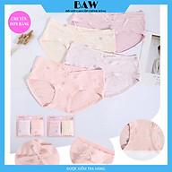 Quần Lót Nữ, Quần Lót Cotton Bà Bầu In Hoạ Tiết Cute siêu co giãn thoáng mát thương hiệu BAW mã QLN581 thumbnail