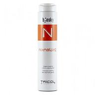 Dầu gội cân bằng dầu cho tóc Normalizing Shampoo 250ML thumbnail