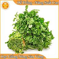 Hạt giống Xà Lách Xoong ( Gói 0,5 Gram ) thumbnail