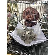 Võng Lưới Mùa hè cho chó mèo thumbnail
