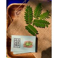 Xà Bông Cao Thảo Dược - Herbal Soap - Làm 100% Từ Thiên Nhiên thumbnail