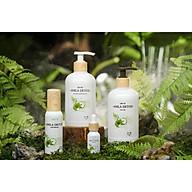 Full bộ 4 sản phẩm Gội xả serum dưỡng tóc amla detox thumbnail