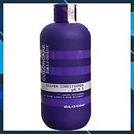 ELGON Colorcare Silver Conditioner 300ml - Dầu xả khử ánh vàng cho tóc bạch kim thumbnail