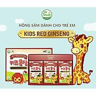 Sante365 - Thực Phẩm Bảo Vệ Sức Khỏe Hồng Sâm Trẻ Em Hộp 20ml x 10 gói hộp nhỏ x 3 hộp lớn 600ml (Kids Red Ginseng) thumbnail