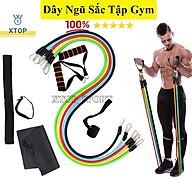Dụng cụ tập gym tại nhà cho nam nữ, Dụng cụ tập bụng con lăn 4 bánh, Dây kháng lực tập gym số 8 XTOP X99 thumbnail