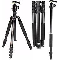 Chân máy ảnh Coman TM-256AC0, Hàng chính hãng thumbnail