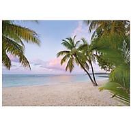 Tranh Dán Tường CASAMA Bãi Biển Buổi Sáng XXL4-528 thumbnail