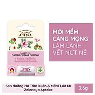 Son dưỡng môi Zelenaya Apteka tinh dầu Tầm xuân & Mầm lúa mì 3,6g thumbnail